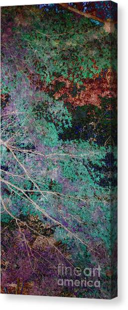 A Forest Of Magic Canvas Print