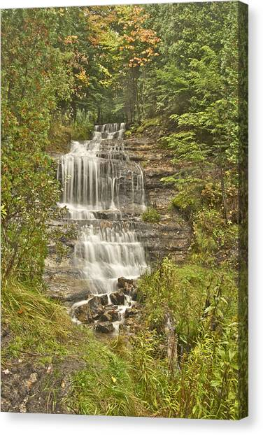 Alger Waterfalls Canvas Print - Alger Falls by Michael Peychich