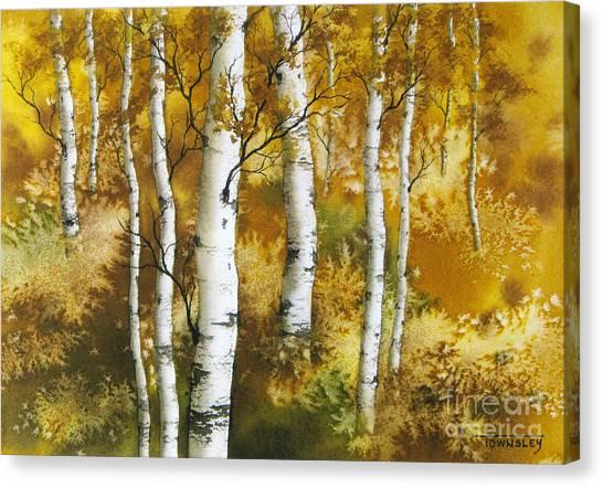 Aspen Grove Canvas Print