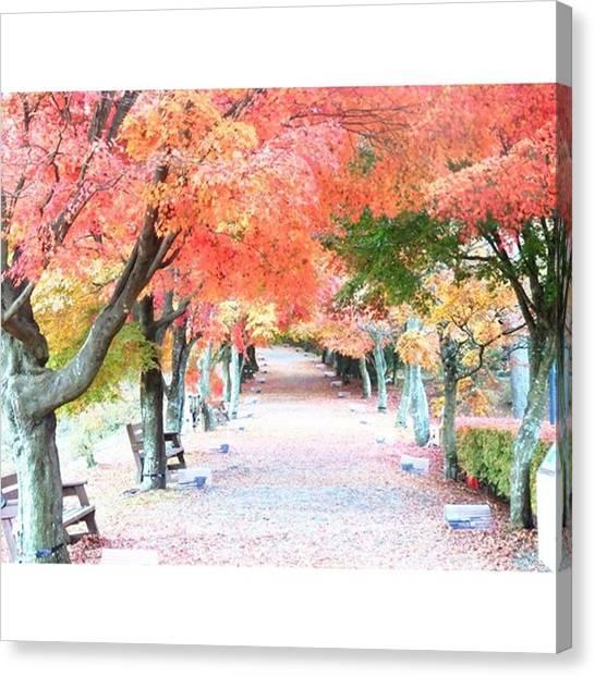 Fairies Canvas Print - Autumn Leaves Japan by Kanna Fairy