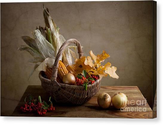 Onions Canvas Print - Autumn by Nailia Schwarz