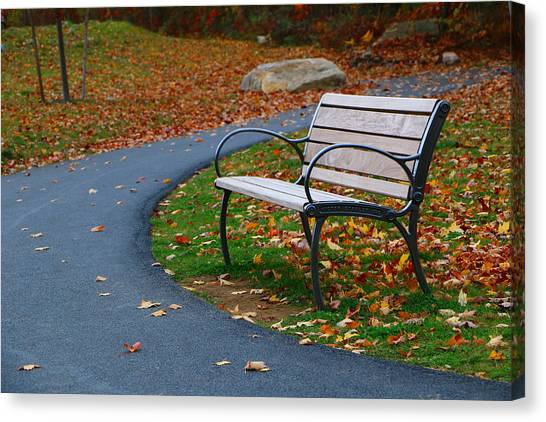 Bench On The Walk Canvas Print