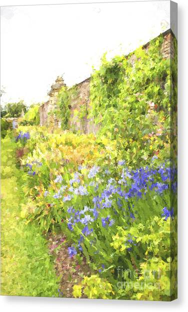 Border Wall Canvas Print - Border With Colorful Flowers by Patricia Hofmeester