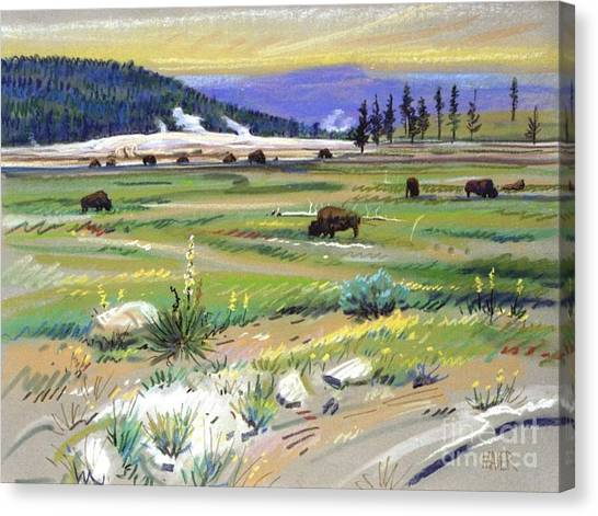 Yellowstone Canvas Print - Buffaloes In Yellowstone by Donald Maier