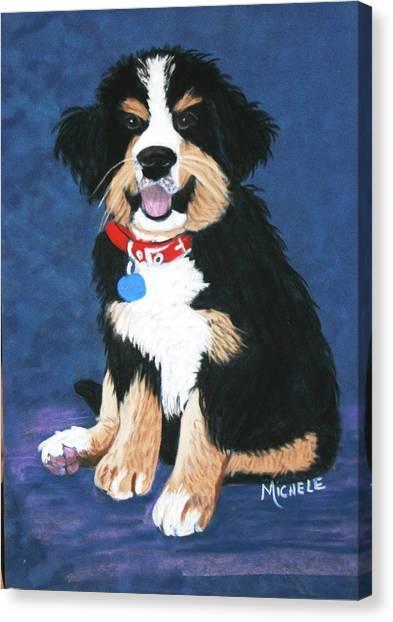 Burmese Mountain Pup Canvas Print