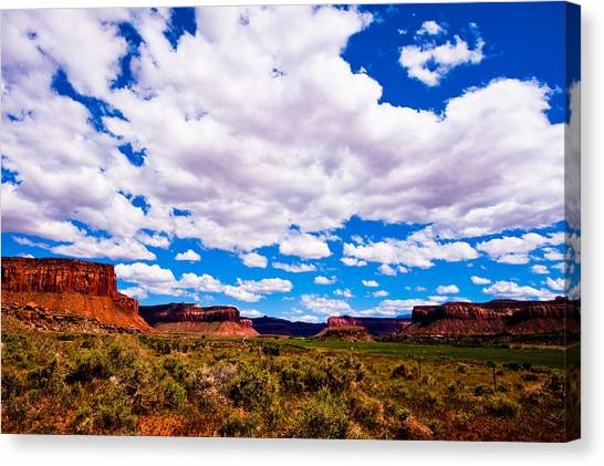 Canyonland N.p. Canvas Print by Larry Gohl