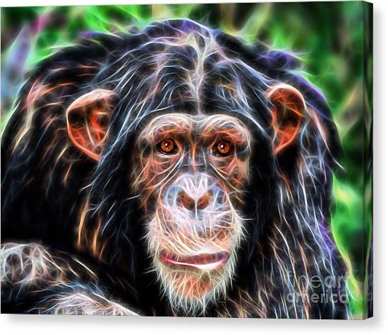 Congo River Canvas Print - Chimpanzee Collection by Marvin Blaine
