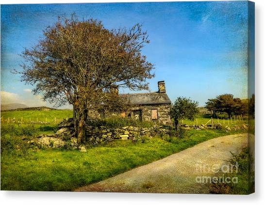 Dilapidated Canvas Print - Cottage Ruin by Adrian Evans