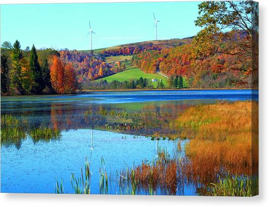 Cranberry Glade Lake Canvas Print by Tammy  McGogney