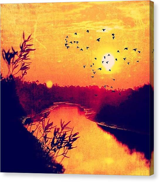 Sunrises Canvas Print - Created With #distressedfx by Joan McCool