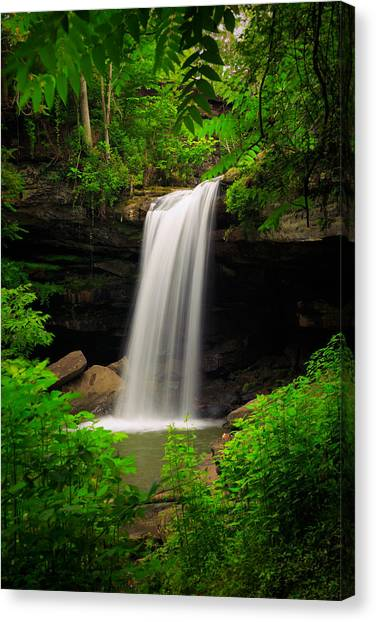 Ohio Valley Canvas Print - Cucumber Falls by Emmanuel Panagiotakis