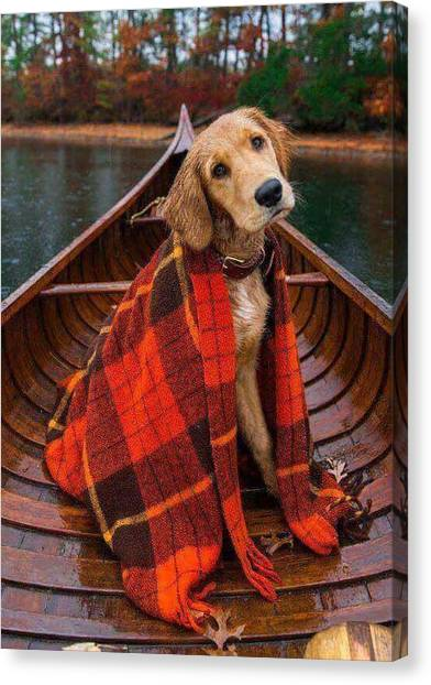 One Direction Canvas Print - Cute Dog  by Willberg Layun