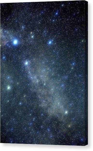 Stellar Canvas Print - Cygnus Constellation by John Sanford