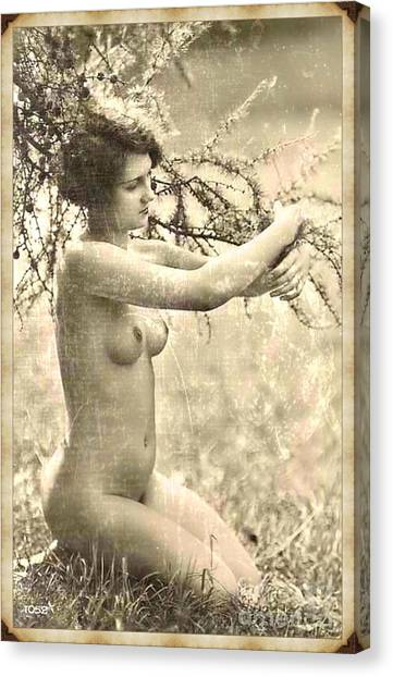 Abstract Nude Canvas Print - Digital Ode To Vintage Nude By Mb by Mary Bassett