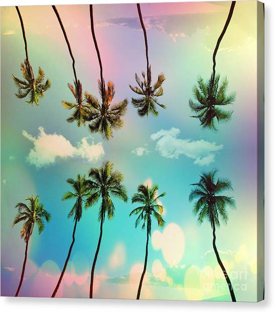 Surfboard Canvas Print - Florida by Mark Ashkenazi