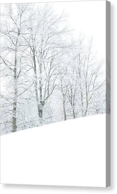 Treeline Canvas Print - Frosted Trees And Pasture Field by Thomas R Fletcher