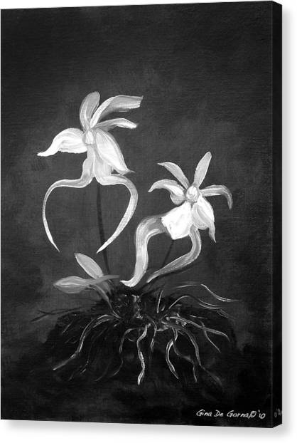 Ghost Orchids Canvas Print