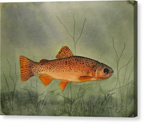 Gila Trout Canvas Print