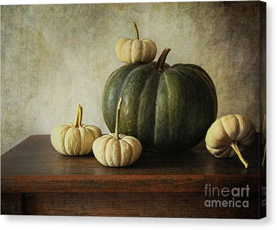 Melons Canvas Print - Green Pumpkin And Gourds On Table  by Sandra Cunningham
