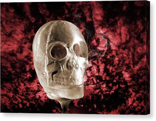 Ice Skull'pture Canvas Print