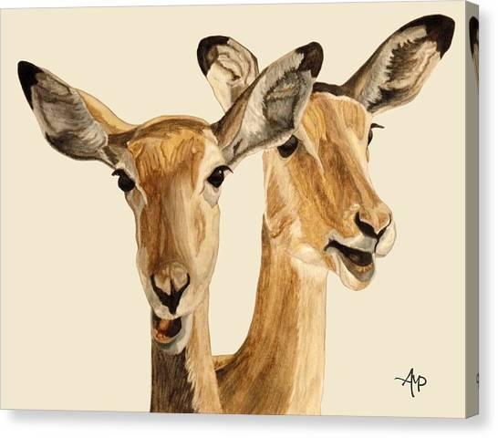 Impalas Canvas Print