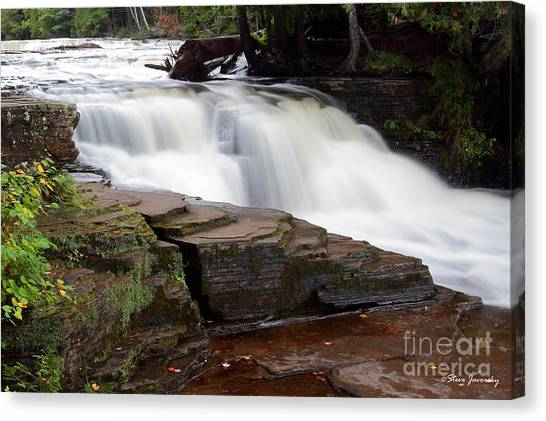 Lower Tahquamenon Falls Area Canvas Print