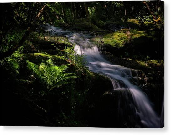 Lynn Mill Waterfalls Canvas Print