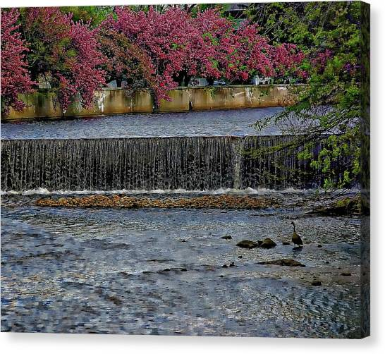 Mill River Park Canvas Print