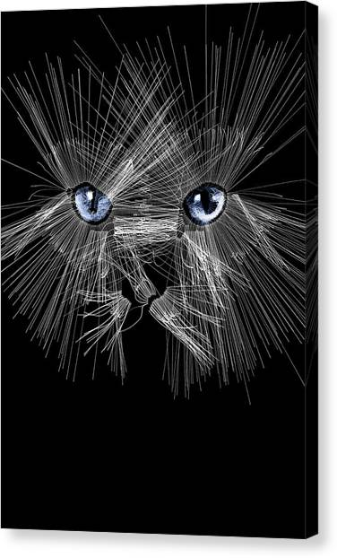 Mister Whiskers Canvas Print