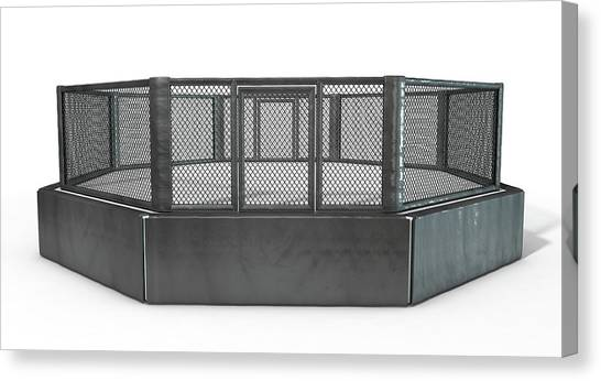 Mma Canvas Print - Mma Cage by Allan Swart