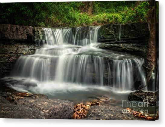 Natural Dam Canvas Print