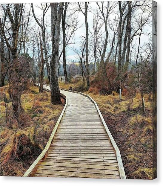 Wetlands Canvas Print - #nature_shooters #naturelovers by Kazan Durante