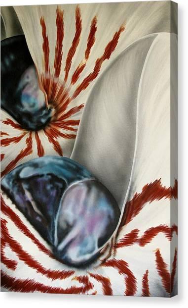 2 Nautilus Canvas Print