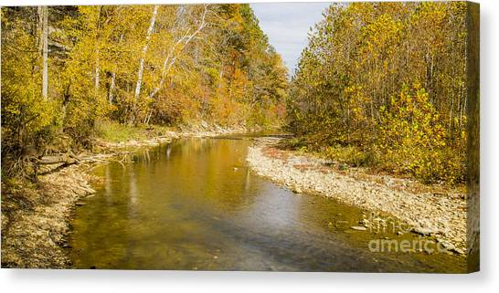 Otters Canvas Print - Otter Creek State Park by Twenty Two North Photography