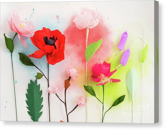 Crepe Paper Canvas Prints Fine Art America