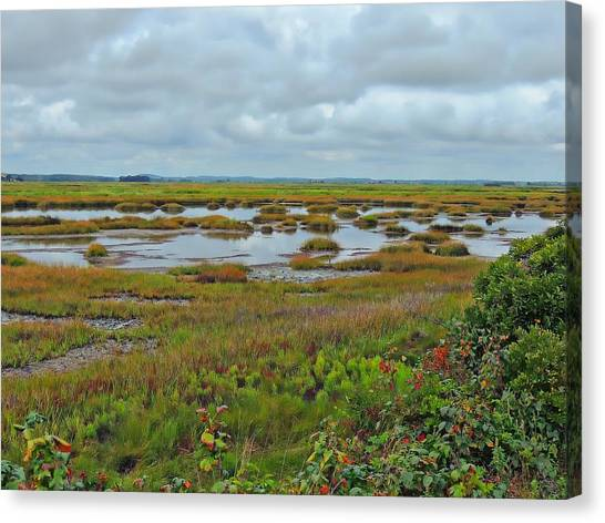 Plum Island Canvas Print by Marcia Lee Jones