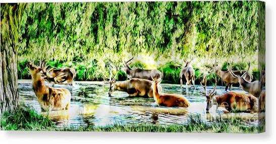 Princes Of The Forest Canvas Print by Jason Christopher