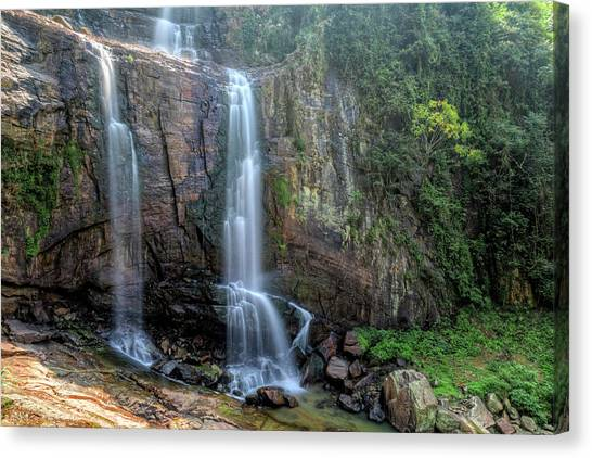 Tea Leaves Canvas Print - Ramboda Falls - Sri Lanka by Joana Kruse