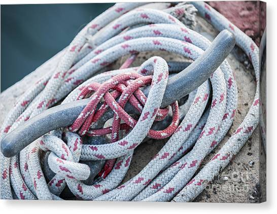 Red Knot Canvas Print - Ropes On Cleat by Elena Elisseeva