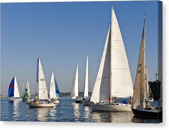 Sailboat Race Canvas Print by Tom Dowd