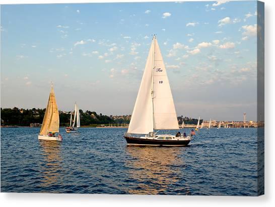 Sailing Canvas Print by Tom Dowd