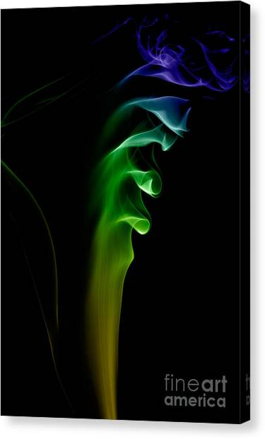 smoke XXVI Canvas Print