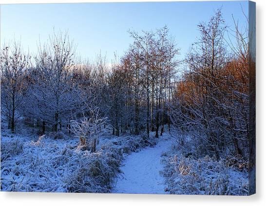 Snowy Cabin Wood Canvas Print