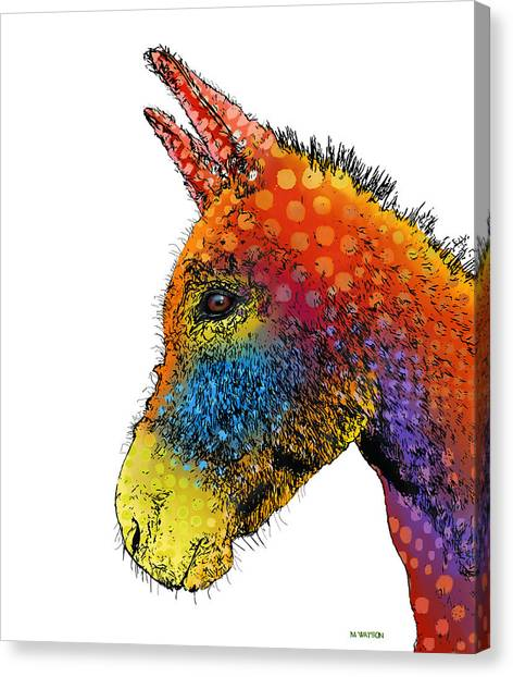 Spotted Donkey Canvas Print