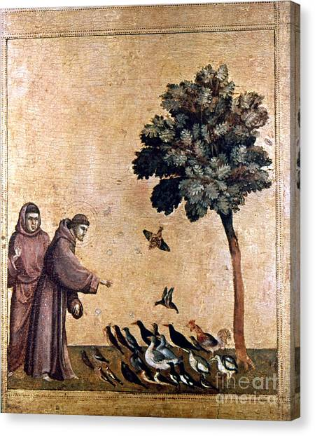 Aod Canvas Print - St. Francis Of Assisi by Granger