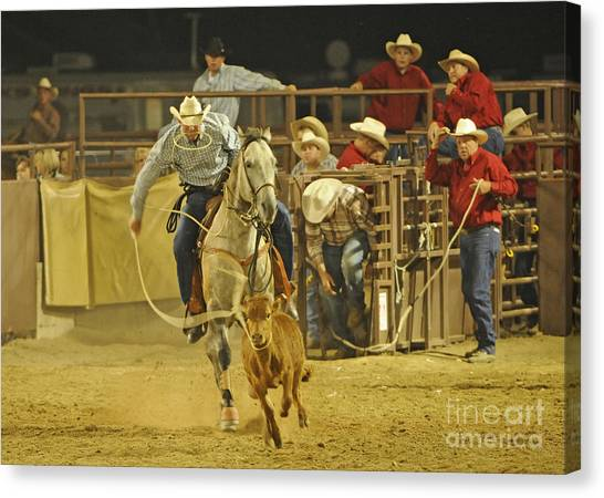 Steer Wrestling Canvas Print by Dennis Hammer