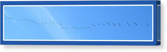String Of Birds In Blue Canvas Print