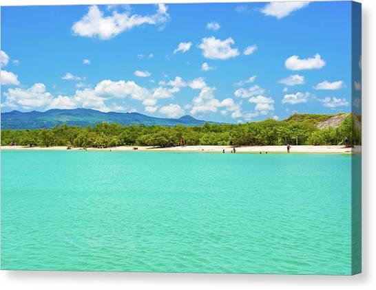 Tortuga Bay Beach At Santa Cruz Island In Galapagos  Canvas Print