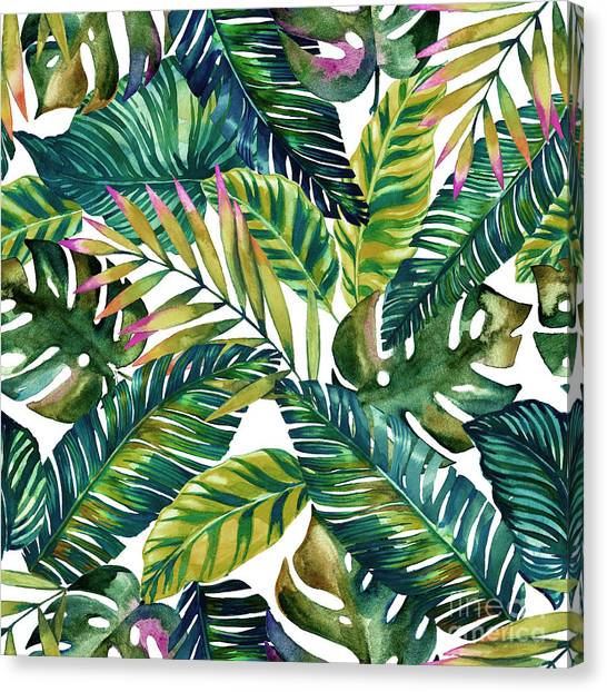 Collage Canvas Print - Tropical  by Mark Ashkenazi