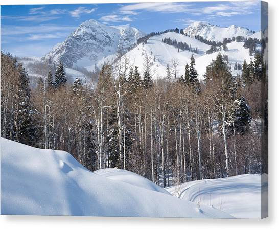 Winter In The Wasatch Mountains Of Northern Utah Canvas Print